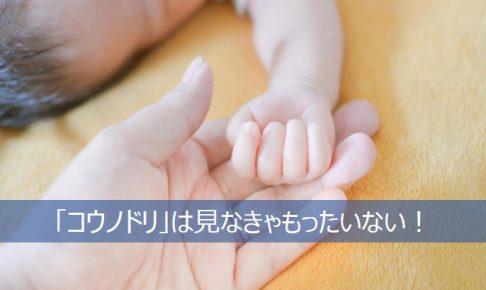 ドラマ「コウノドリ」を見るべきと訴える赤ちゃんの手と親の手